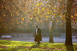 © Licensed to London News Pictures. 29/11/2016. London, UK. People walk in Hyde Park, London on a frosty morning as temperatures in the capital drop as low as -3C on Tuesday, 29 November 2016. Photo credit: Tolga Akmen/LNP