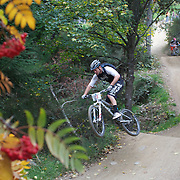 Byron Scott in action as mountain bike racers tackle the Ben Lomond Forest course high above Queenstown during the Outside Sports Super D Enduro event in Queenstown, Central Otago, at the Weekend. The 6 hour non stop team and individual races attracted 86 competitors and included Skyline Gondola access.  The Open Female category was won by Hanna Thorne from Dunedin while Kurt Lancaster from Nelson won the Open Male Category. The event was part of the inaugural Queenstown Bike Festival, taking place from 16th-25th April. The event hopes to highlight Queenstown's growing profile as one of the three leading biking centres in the world. Queenstown, Central Otago, New Zealand. 16th April 2011. Photo Tim Clayton..