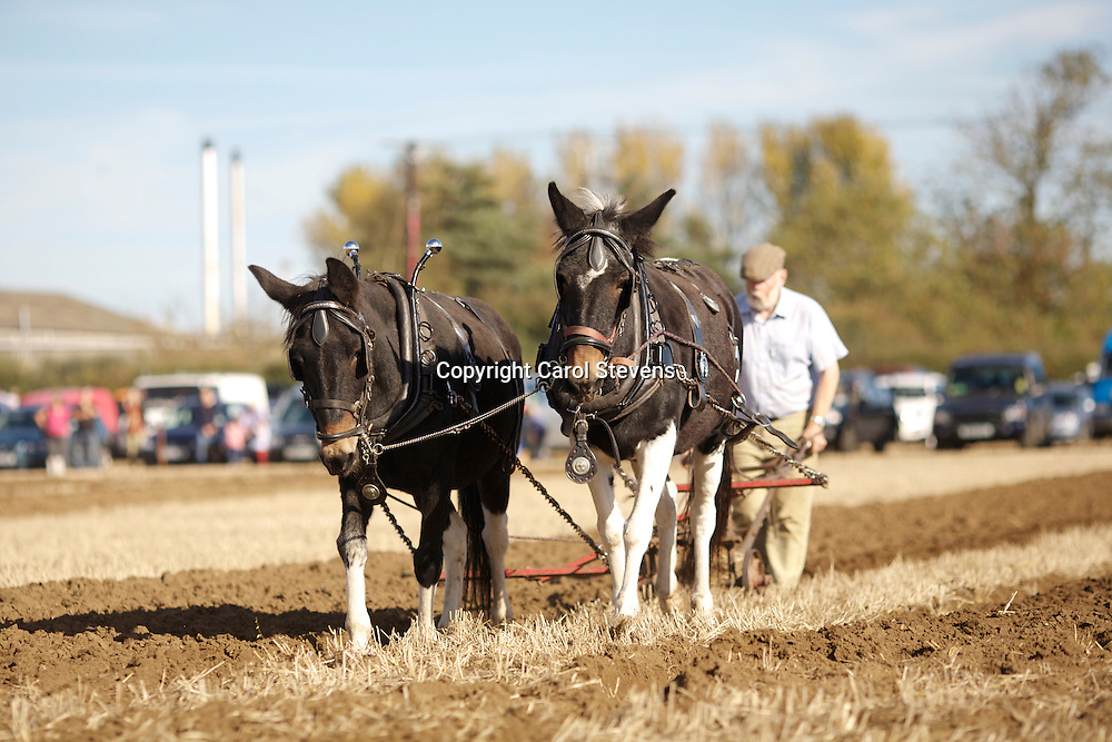 Northern Heavy Horse Society Annual Ploughing Match 2013