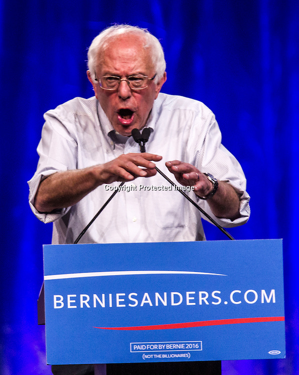 Democratic presidential candidate Sen. Bernie Sanders, I-Vt., speaks at a rally, Monday, Aug. 10, 2015, at the Los Angeles Memorial Sports Arena in Los Angeles. (AP Photo/Ringo H.W. Chiu)