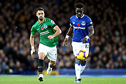 Brighton and Hove Albion midfielder Beram Kayal (7) and Everton midfielder Idrissa Gueye (17) during the Premier League match between Everton and Brighton and Hove Albion at Goodison Park, Liverpool, England on 3 November 2018.