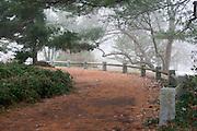 Summit Plateau (Manmade), The Boston Arboretum, Massachusetts, 2013 Trees and park frozen, Boston, MA