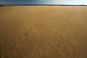 Secluded Beach - Tasmania