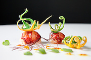 Lobster sea and garden dish at Arzak in San Sebastian, Spain.
