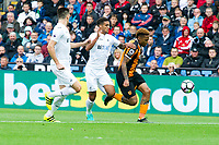 Football - 2016 / 2017 Premier League - Swansea City vs. Hull City<br /> <br /> Abel Hernandez of Hull City attacks-- at the Liberty Stadium.<br /> <br /> COLORSPORT/WINSTON BYNORTH