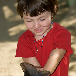 A girl holds a blue morpho butterfly at the Butterfly Farm on St. Martin.