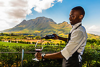 Waiter pouring wine on the terrace of the restaurant at Delaire Graff Wine Estate (vineyards in background) atop Helshoogte Pass, near Stellenbosch, Cape Winelands (near Cape Town), South Africa.