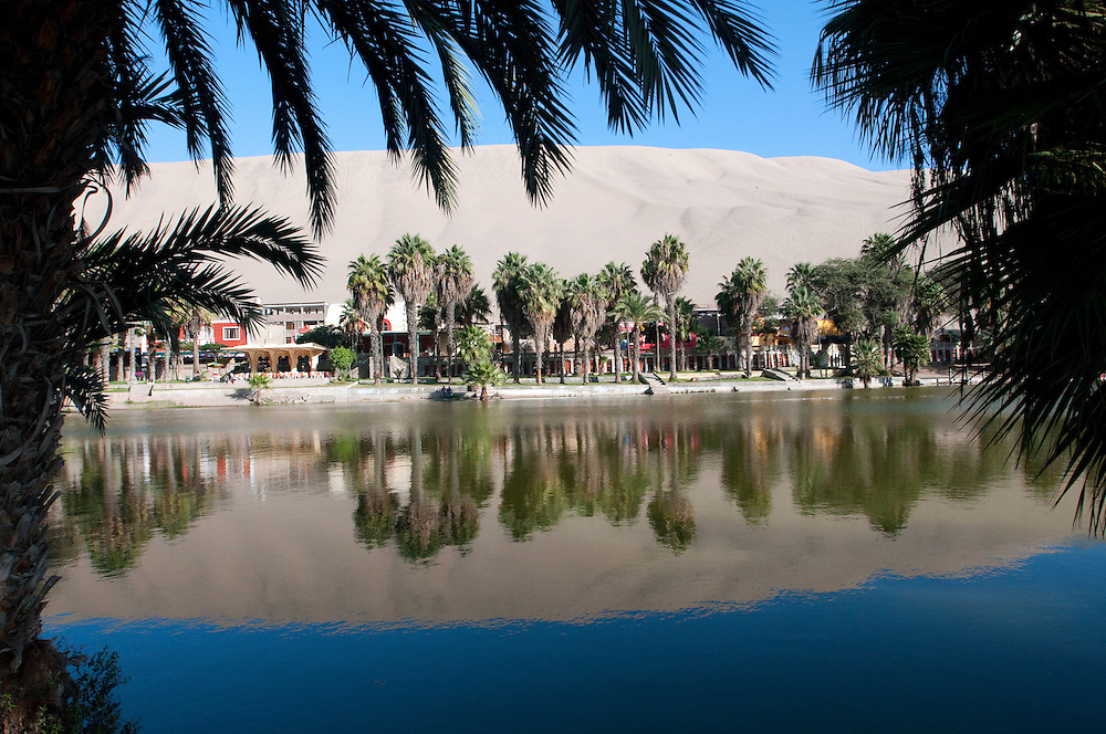 The oasis at Huacachina in Peru was once naturally fed by springs.  Growth in the nearby city of Ica drained the natural supply and now the lagoon needs to be artificially filled.  In the days when the lagoon was natural, it was tinted red due to mineral deposits.