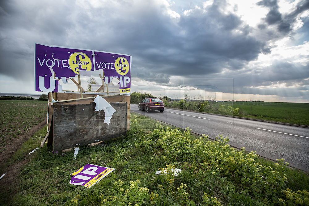 @Licensed to London News Pictures 30/04/2015.Thanet, Kent. A destroyed UKIP election banner found on the side of the road in Thanet South constituency contested my Nigel Farage leader of the UKIP Party. Photo credit: Manu Palomeque/LNP