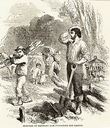 British imigrant family in Australia clearing ground and creating  their new home and farm.  Engraving c1850.