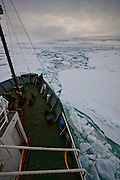 The Greenpeace ship  cuts through Arctic Sea Ice, Fram Strait, between Greenland and Svalbard, September 2009. In August 2012, Arctic sea ice hit a record minimum - this will affect weather and the global climate, as the ice cap reflects much of the sun's solar energy back into to space. With sea ice melting away, the dark water below absorbs more solar energy, which in turn causes more melting.