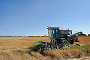 Forgotten Gleaner combine in recently harvested wheat field near Pawnee, Oklahoma.