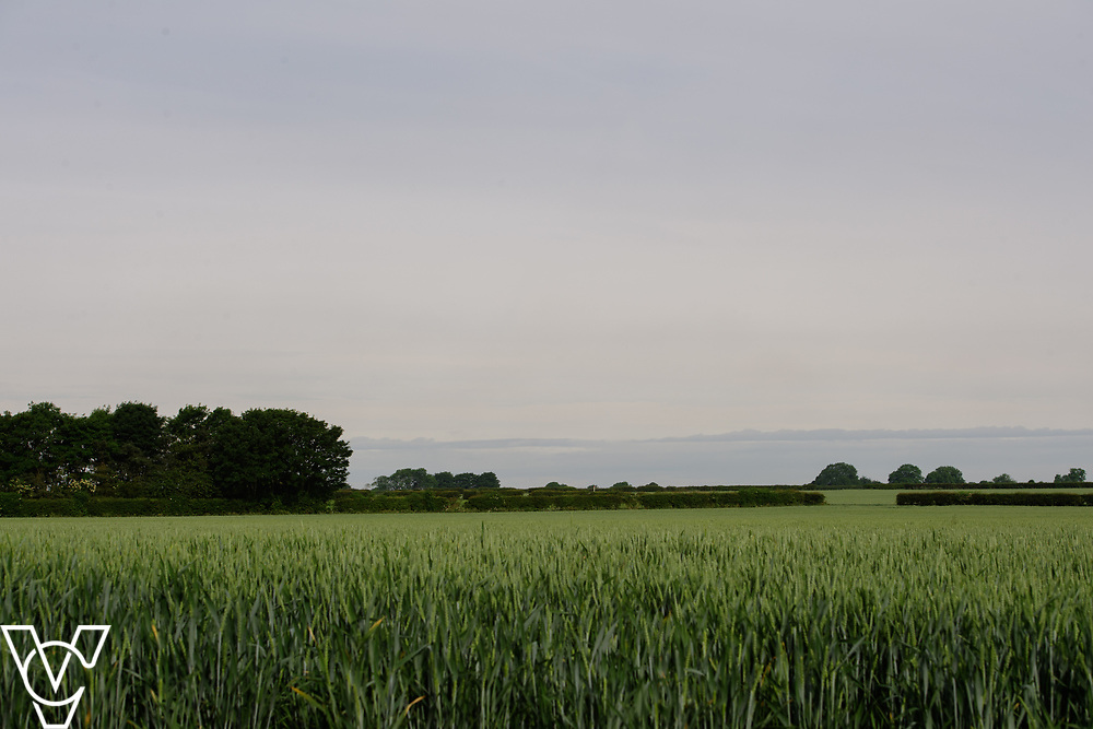 North Kesteven District Council (NKDC) - stock photography: Fields off Canwick Avenue, Bracebridge Heath looking towards Lincoln Cathedral <br /> <br /> Picture: Chris Vaughan Photography<br /> Date: June 2, 2017