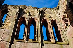 Window detail in Melrose Abbey, Melrose. Scottish Borders<br /> <br /> (c) Andrew Wilson | Edinburgh Elite media