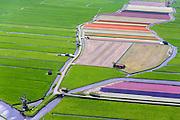 Nederland, Zuid-Holland, Gemeente Teylingen, 09-04-2014; Elsgeesterpolder met watermolen Hoop Doet Leven aan de Leidsevaart (Haarlemmertrekvaart). Bloembollenvelden op geestgrond temidden van de weilanden.<br /> Flowering bulbs in the polder, surrounded by meadows. Polder mill (bottom left) next to the chanal.<br />  luchtfoto (toeslag op standard tarieven)<br /> aerial photo (additional fee required)<br /> copyright foto/photo Siebe Swart