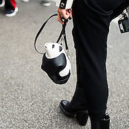 Loewe Panda Bag on Leaf Greener at Lanvin SS2017