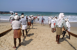 Men pulling in a fishing net at Kovalam beach; Kerala; India,