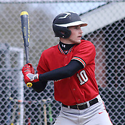 William Penn Outfielder Corey Johns (10) stands in the batter box during of a varsity scheduled game between the Colonials of William Penn and The St. Elizabeth Vikings Saturday, April 25, 2015, at William Penn High School baseball field in New Castle Delaware.<br /> <br /> William Penn defeats St. Elizabeth 6-5