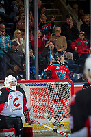KELOWNA, CANADA - OCTOBER 28: Leif Mattson #28 of the Kelowna Rockets celebrates a goal behind the net of Taylor Gauthier #35 of the Prince George Cougars on October 28, 2017 at Prospera Place in Kelowna, British Columbia, Canada.  (Photo by Marissa Baecker/Shoot the Breeze)  *** Local Caption ***