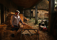 Man preparing straw to be used on the roof of a palloza, a traditional  house in the Ancares Mountains