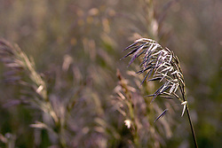 03 June 2005<br />
