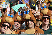 "Spectators in rabbit suits enjoying the cricket on Day 1 of the 1st Test in the 2013-14 Ashes Cricket Series between Australia and England at the GABBA (Brisbane, Australia) from Thursday 21st November 2013<br /> <br /> Conditions of Use : NO AGENTS ~ This image is subject to copyright and use conditions stipulated by Cricket Australia.  This image is intended for Editorial use only (news or commentary, print or electronic) - Required Image Credit : ""Steven Hight - AURA Images"""