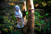 A figure of what appears to be Mary is tied to a tree at  in  Aokigahara Jukai, better known as the Mt. Fuji suicide forest, which is located at the base of Japan's famed mountain west of Tokyo, Japan.