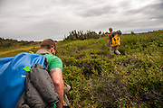 Dave Costello and Parker Meek hiking in the Tweedsmuir National Park, BC, Canada