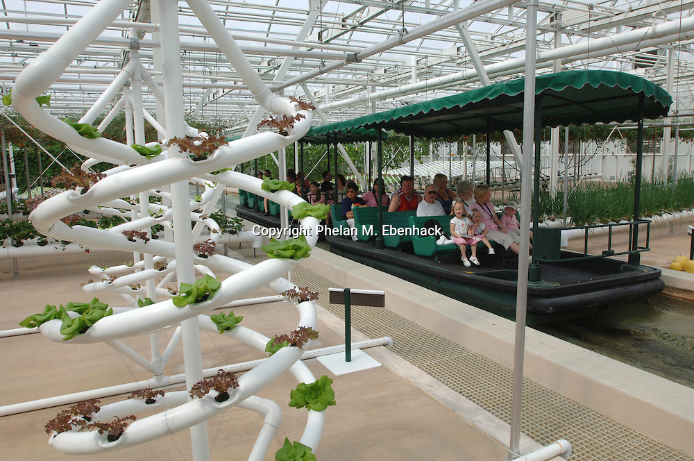 Tourists view the area where letuce and other vegetables are maturing in the hydroponic growing facility at Walt Disney World's EPCOT theme park in Lake Buena Vista, Florida.