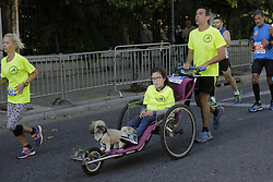 November 13, 2016 - Athens, Attica, Greece - A runner pushes a girl and a dog in a wheel chair. Thousands of people from all over the world took part in the 2016 Athens Marathon the Authentic, which starts in the town of Marathon and is ending in Athens, the route, which according to legend was first run by the Greek messenger Pheidippides in 490 BC. (Credit Image: © Michael Debets/Pacific Press via ZUMA Wire)