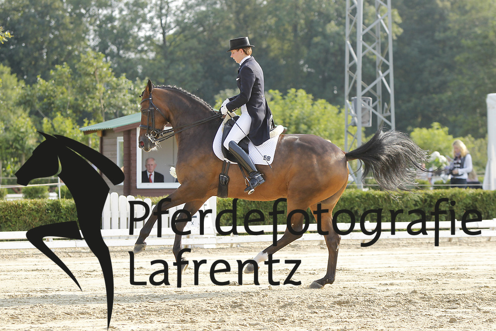 PAPE Susan, Cayenne W<br /> Dobrock/Wingst - 2011<br /> (c) www.sportfotos-Lafrentz. de/Stefan Lafrentz