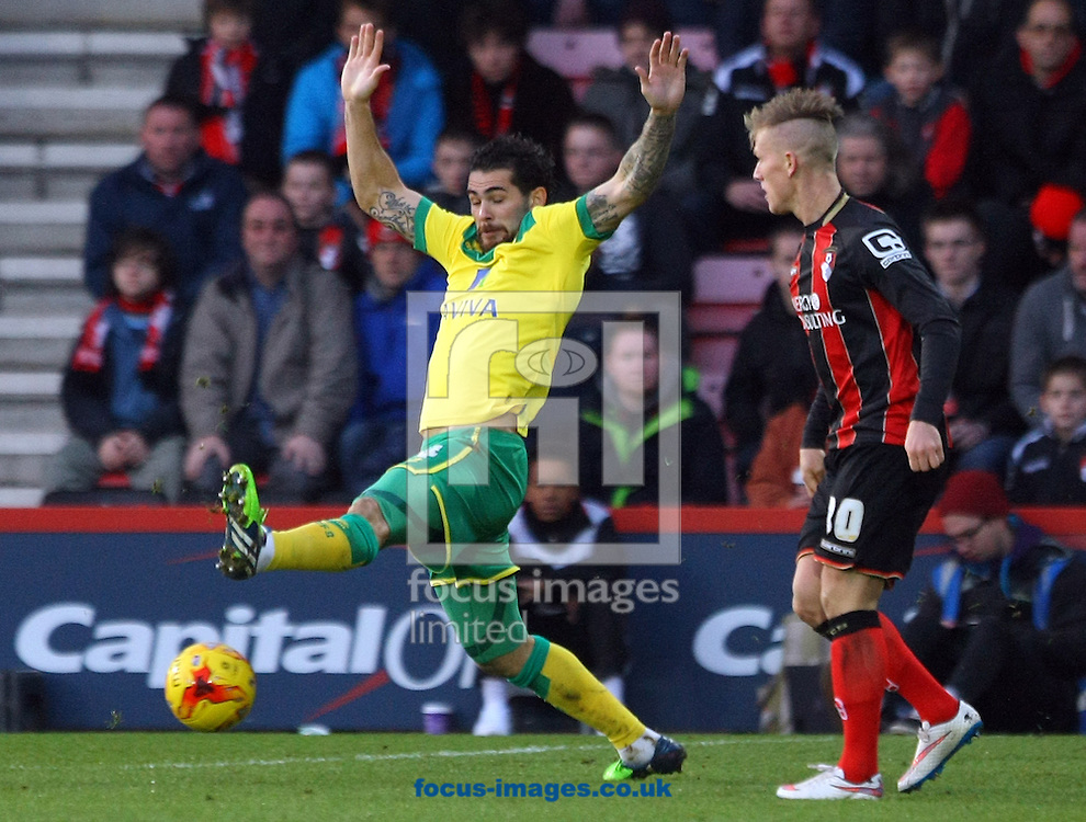Bradley Johnson of Norwich and Matt Ritchie of Bournemouth in action during the match at the Goldsands Stadium, Bournemouth<br /> Picture by Paul Chesterton/Focus Images Ltd +44 7904 640267<br /> 10/01/2015