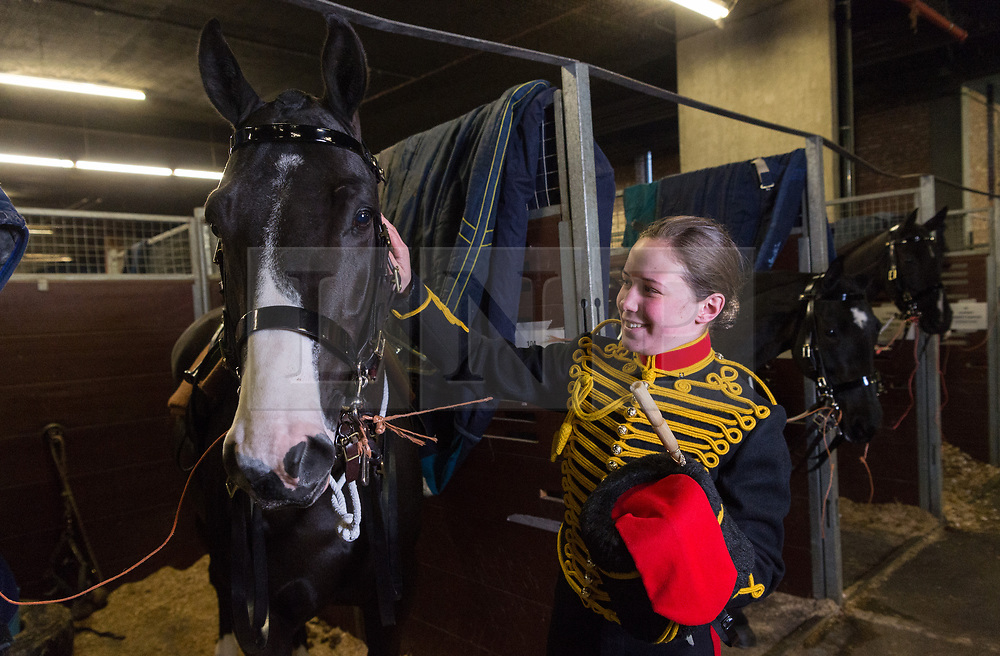 © Licensed to London News Pictures. 06/02/2018. London, UK.  Gunner Ellier Bellamy of The KIng's Troop Royal Horse Artillery with er horse Guinness prepares in  temporary stables in Wellington Barrack. The KIng's Troop Royal Horse Artillery will ride with horses and gun carriages taking part in a 41 gun salute to mark the anniversary of the Accession of Her Majesty The Queen.  Photo credit: Ray Tang/LNP