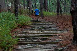 January 19, 2019 - Southern Pines, North Carolina, US - Jan. 19, 2019 - Southern Pines N.C., USA - Jason Wozniak, Hillsborough, North Carolina, climbs a steep incline towards the start/finish line during the 10th Annual Weymouth Woods 100km ultra marathon at the Weymouth Woods Nature Preserve. Runners needed to complete 14 laps of the 4.47 mile course for 62.58 miles in under the 20-hour time allotment. (Credit Image: © Timothy L. Hale/ZUMA Wire)
