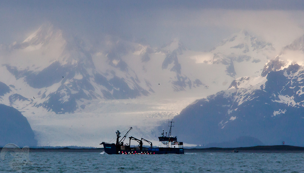 "The tender vessel, Sound Pacer traverses the Copper River Delta, in front of Sheridan Glacier, during a spring opener on the Copper River ""Flats."""