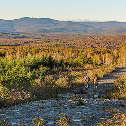 Two men walking through a recent clear cut on the lower slopes of Mount Abraham in Mount Abram Township, Maine.