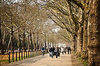 Green Park, London, England.