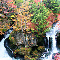 Asia, Japan, Nikko. Ryuzu Falls, Nikko National Park, in full fall color.