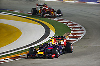 RICCIARDO Daniel (Aus)<br />