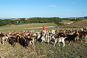Italy - Siena: Azienda agricola Santa Margherita