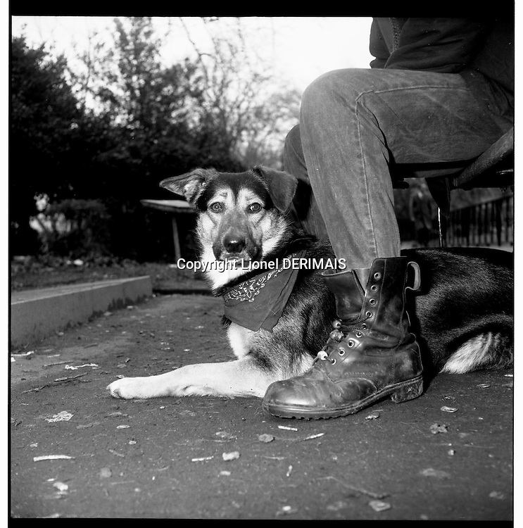London homeless and their dogs.