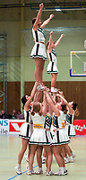 BLNO, eliteserien basket menn, Stovnerhallen 30.01.02. <br />