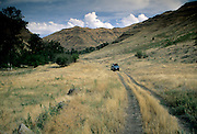 An old dirt track follows the path up lower Camp Creek Canyon at The Nature Conservancy's Zumwalt Prairie Preserve. Zumwalt Prairie is the largest remaining tract of native bunchgrss prairie in North America.