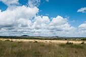 Polokwane Nature Reserve