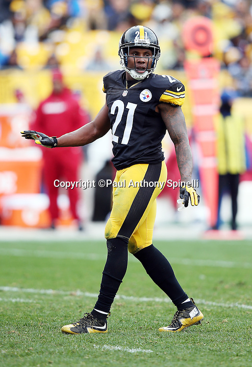 Pittsburgh Steelers safety Robert Golden (21) looks on during the 2015 NFL week 6 regular season football game against the Arizona Cardinals on Sunday, Oct. 18, 2015 in Pittsburgh. The Steelers won the game 25-13. (©Paul Anthony Spinelli)