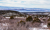 The view from up on the La Sal mountain foothills looking back toward Moab and Canyonlands in December. Utah, USA.