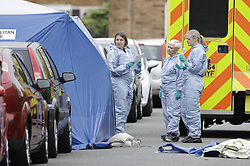 © Licensed to London News Pictures. 26/09/2016. London, UK. Forensics officers attend the scene where a man was fatally stabbed. Police were called to to a disturbance in Braintree Road on Sunday evening 25th September 2016 where officers found a man in his thirties suffering from stab wounds. He died at the scene a short while later. A murder investigation has been launched. Photo credit: Peter Macdiarmid/LNP