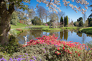 Cholmondeley Castle Gardens - General Images