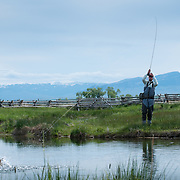 An angler sets the hook on a trout while fly fishing on a spring creek in western Montana.