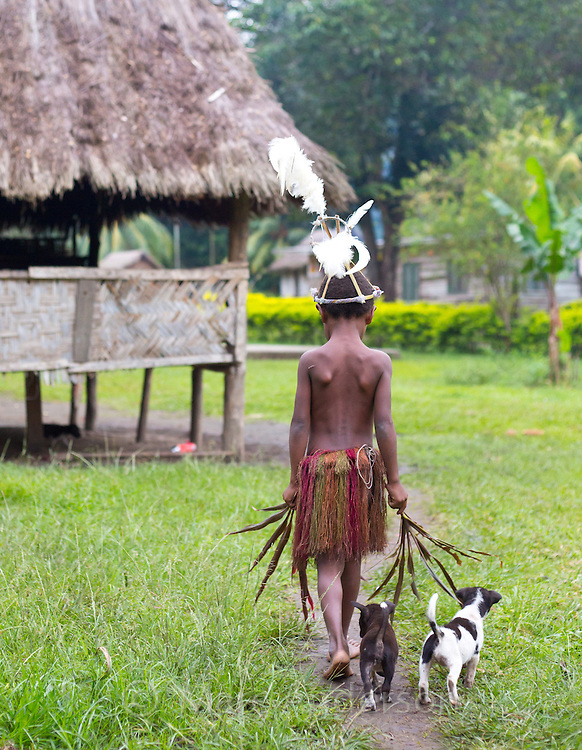 Young boy wearing traditional Yonki tribal outfit and being followed by small puppies in a small village in the Erap valley, Papua New Guinea